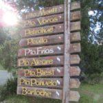 puerto frias cruce andino