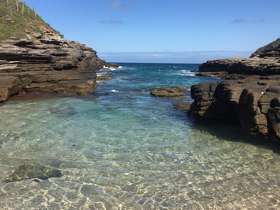 praia da foca búzios