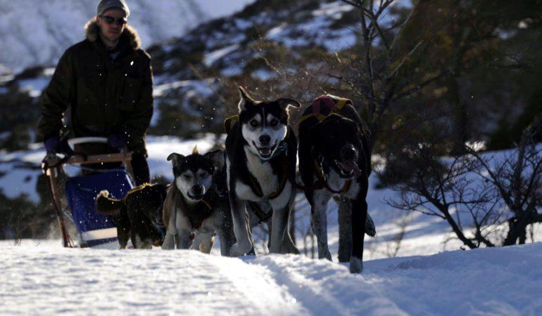 """Un """"territorio"""" fascinante: Haruwen, Tierra del Fuego"""