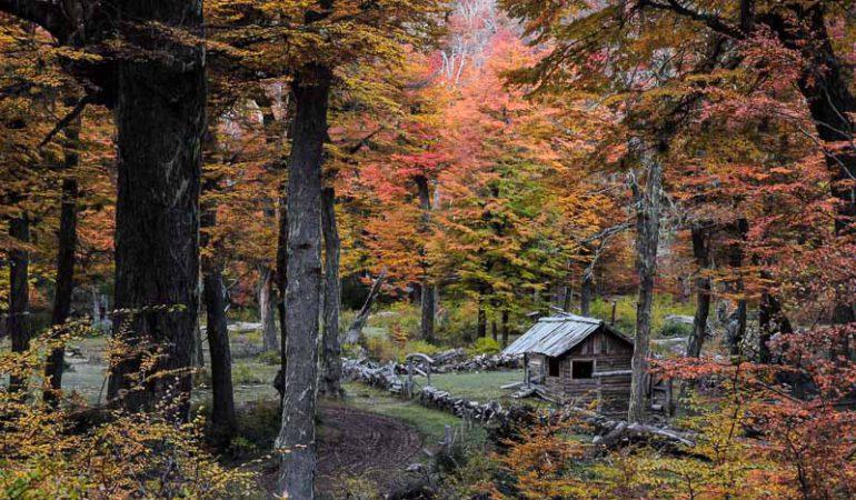 Visitando San Martín de los Andes en otoño