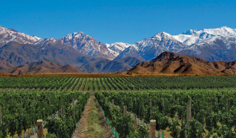 Mendoza, buenos vinos y aventura