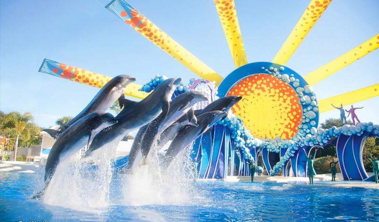 Seaworld lanzará nuevas atracciones en 2021